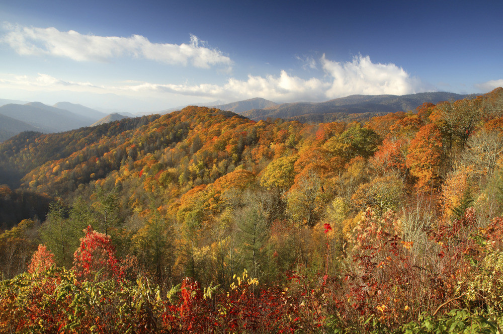 10 Things To Do During Fall In North Georgia